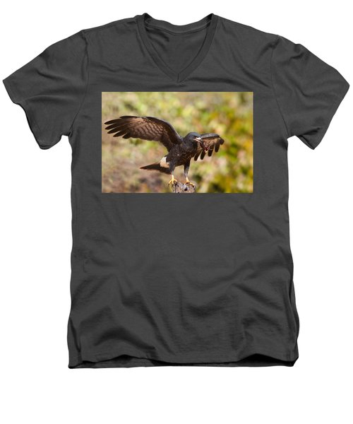 Snail Kite With Crab In Pantanal Men's V-Neck T-Shirt by Aivar Mikko