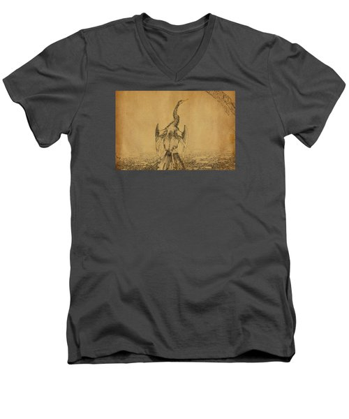 Snake Bird Or Darter  Men's V-Neck T-Shirt