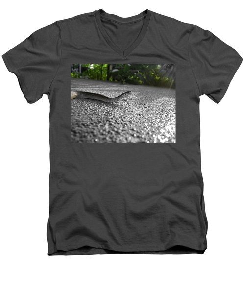 Snake In The Sun Men's V-Neck T-Shirt