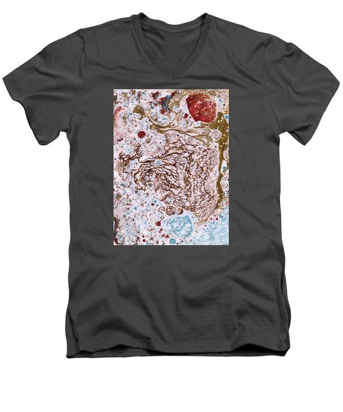 Snapping Turtle In The Sun Men's V-Neck T-Shirt