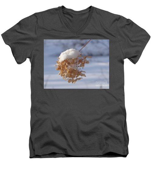 Snow-capped II Men's V-Neck T-Shirt