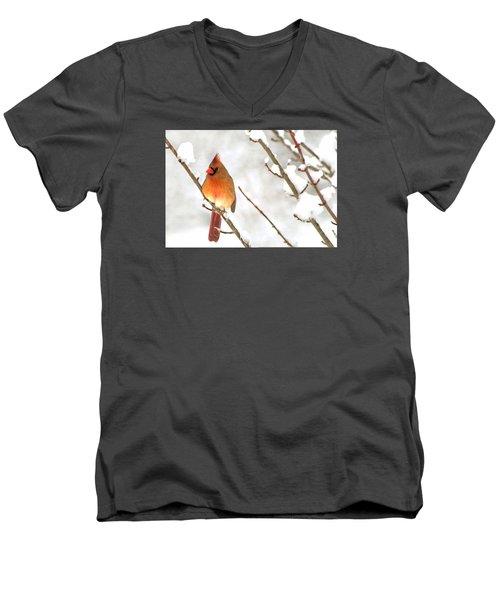 Snow Cardinal Men's V-Neck T-Shirt by Marion Johnson