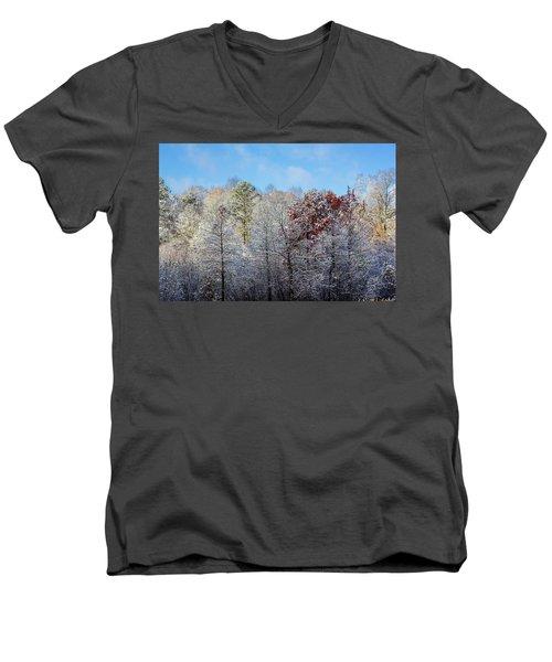 Snow Dust Men's V-Neck T-Shirt
