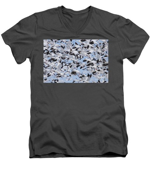 Snow Geese Men's V-Neck T-Shirt