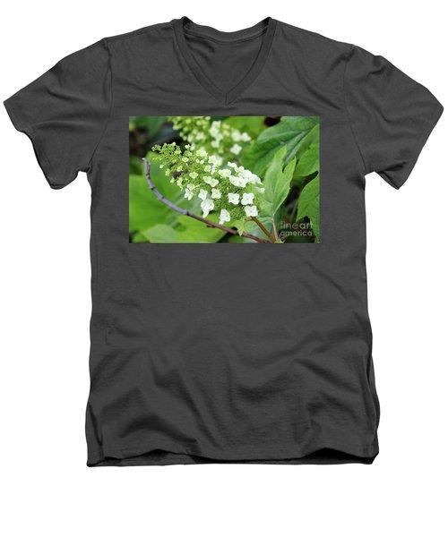 Snow Queen Hydrangea Men's V-Neck T-Shirt