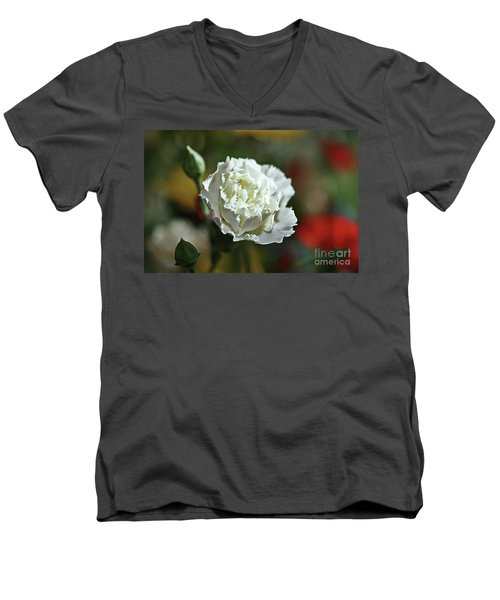 Men's V-Neck T-Shirt featuring the photograph Snow White by Stephen Mitchell
