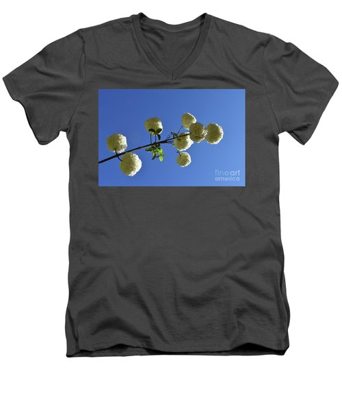 Men's V-Neck T-Shirt featuring the photograph Snowballs On A Stick by Skip Willits