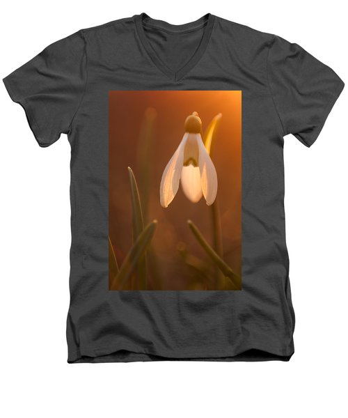 Men's V-Neck T-Shirt featuring the photograph Snowdrop by Davorin Mance