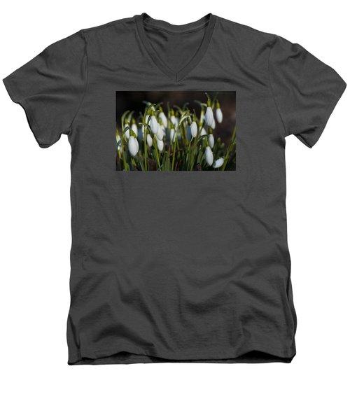 Snowdrops Men's V-Neck T-Shirt by Dan Hefle