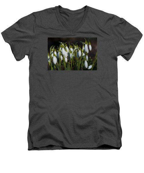 Snowdrops Men's V-Neck T-Shirt