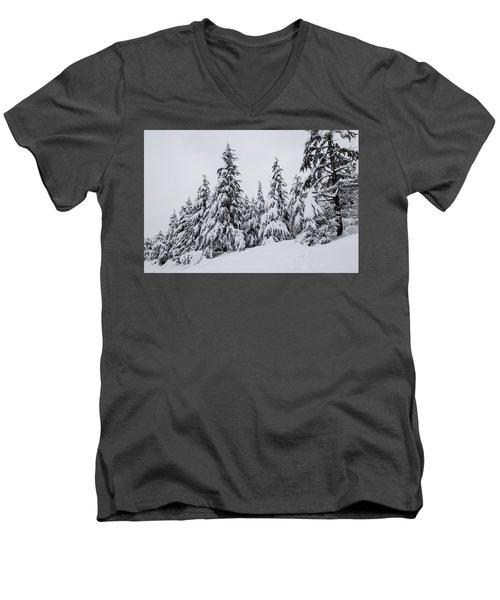 Snowy-1 Men's V-Neck T-Shirt