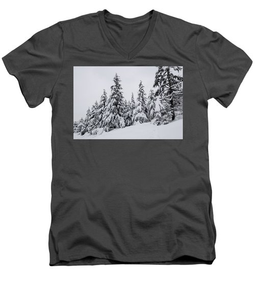Snowy-1 Men's V-Neck T-Shirt