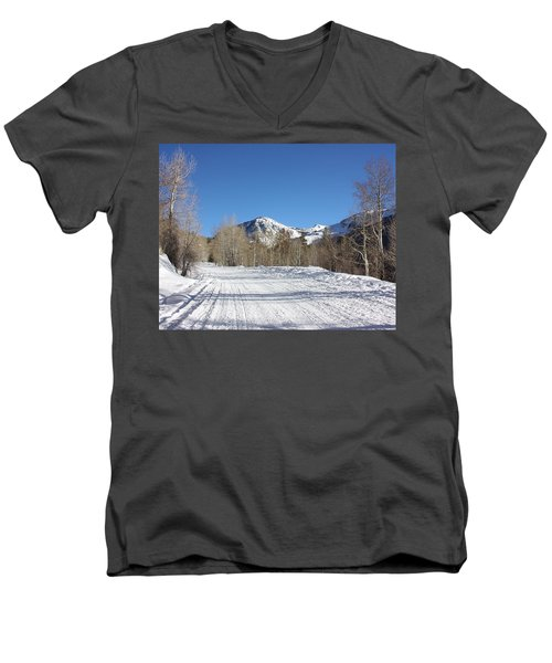 Snowy Aspen Men's V-Neck T-Shirt