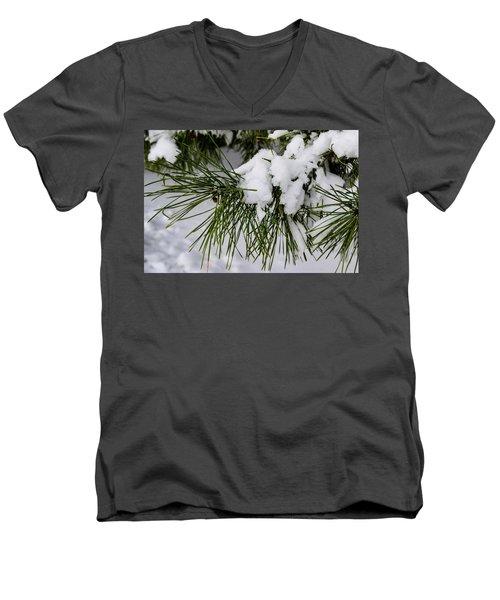 Snowy Branch Men's V-Neck T-Shirt
