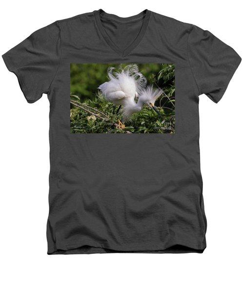 Snowy Decsending Men's V-Neck T-Shirt