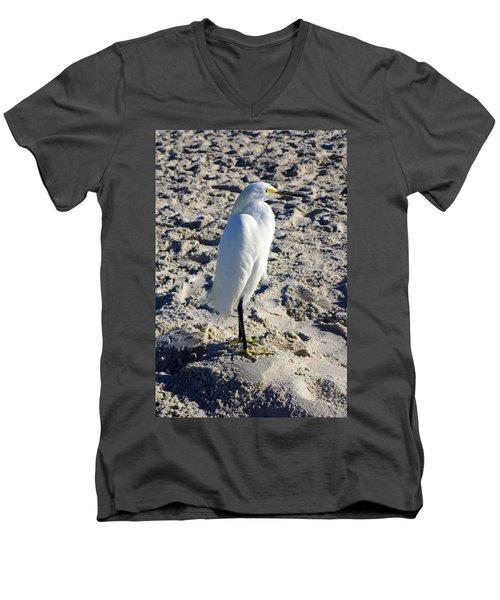 Snowy Egret At Naples, Fl Beach Men's V-Neck T-Shirt