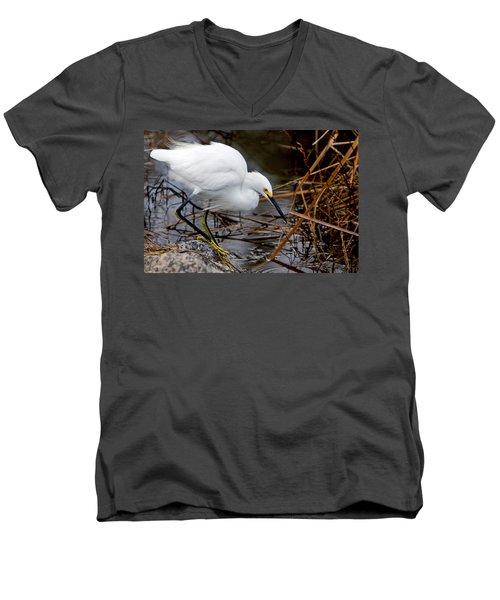 Snowy Egret Egretta Men's V-Neck T-Shirt