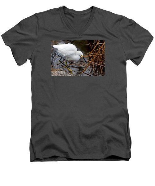 Snowy Egret Egretta Men's V-Neck T-Shirt