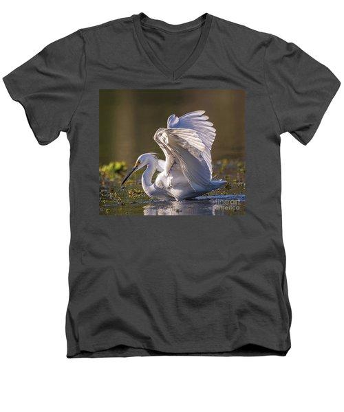 Snowy Egret Hunting - Egretta Thula Men's V-Neck T-Shirt