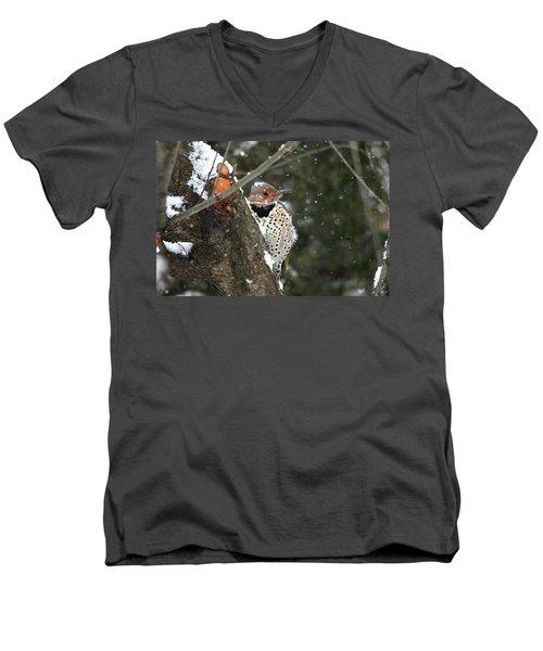 Snowy Northern Flicker Men's V-Neck T-Shirt