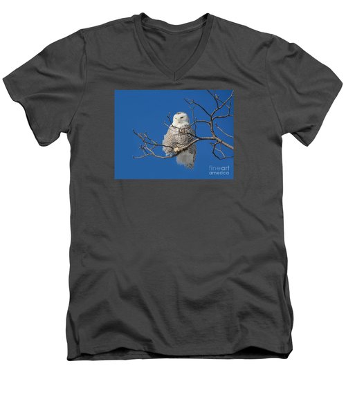 Snowy Owl 7 Men's V-Neck T-Shirt