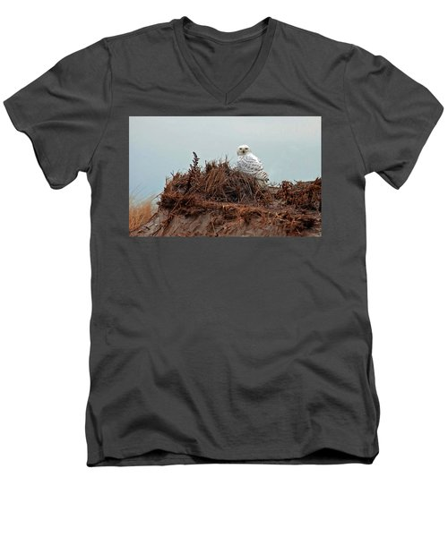 Snowy Owl In Dunes Men's V-Neck T-Shirt