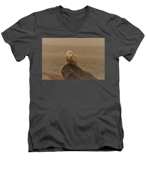 Snowy Owl In Sepia Men's V-Neck T-Shirt