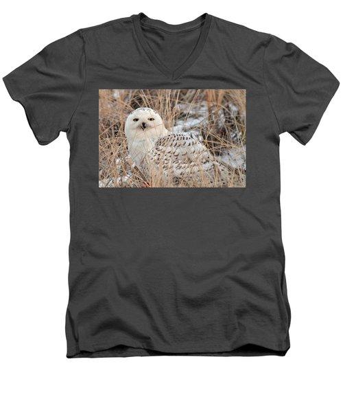 Snowy Owl Men's V-Neck T-Shirt by Nancy Landry