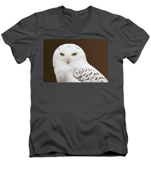 Snowy Owl Men's V-Neck T-Shirt by Steve Stuller