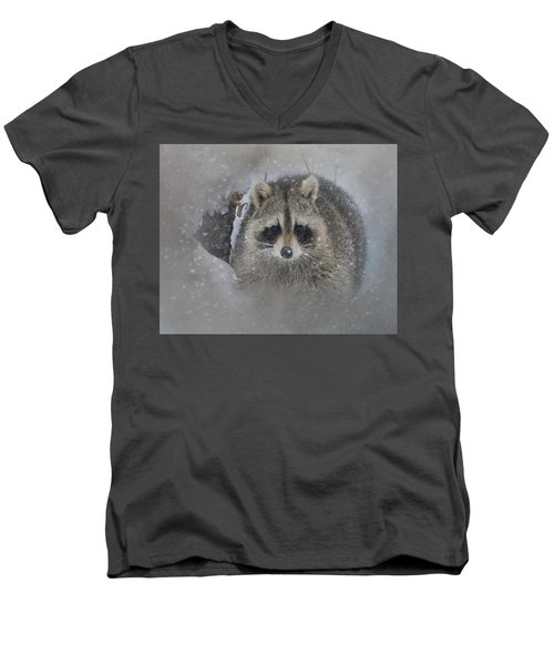 Snowy Raccoon Men's V-Neck T-Shirt