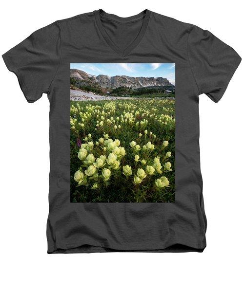 Snowy Range Paintbrush Men's V-Neck T-Shirt