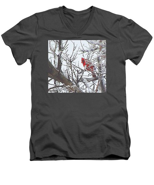Snowy Red Bird A Cardinal In Winter Men's V-Neck T-Shirt