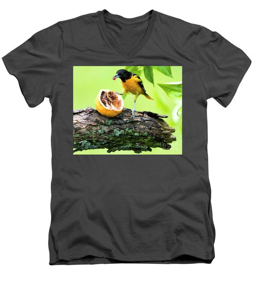 Soaking Wet Baltimore Oriole At The Feeder Men's V-Neck T-Shirt