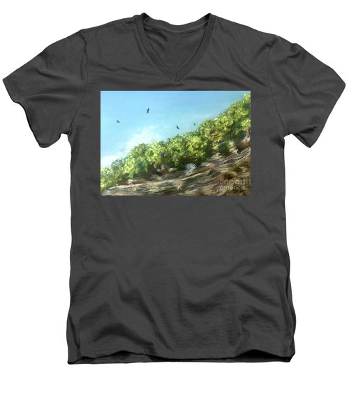 Soaring Above The North Rim Men's V-Neck T-Shirt