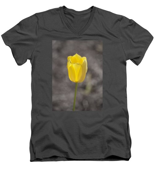 Soft And Yellow Men's V-Neck T-Shirt by Morris  McClung