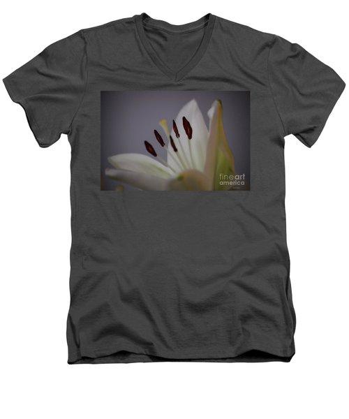 Soft Lily Men's V-Neck T-Shirt