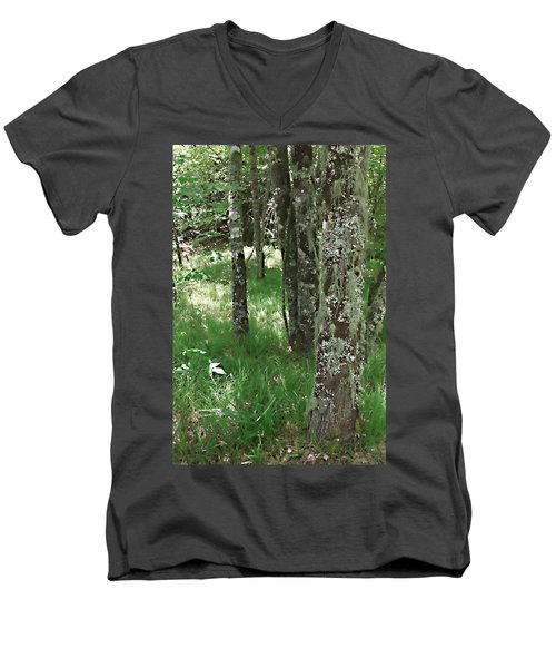 Men's V-Neck T-Shirt featuring the photograph Soft Trees by Shari Jardina