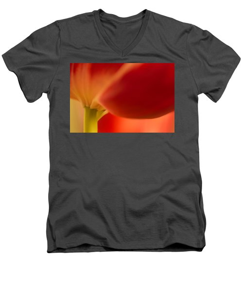 Soft Tulip Men's V-Neck T-Shirt