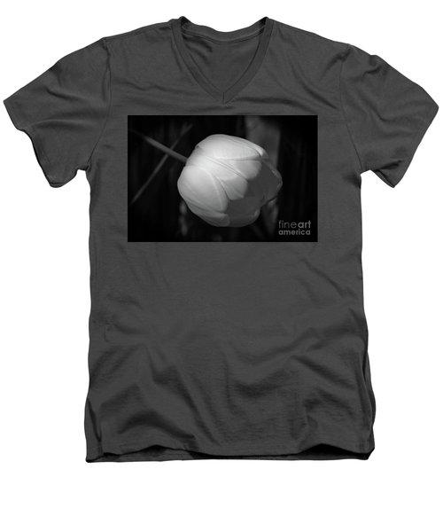 Softly Men's V-Neck T-Shirt by Jim Gillen