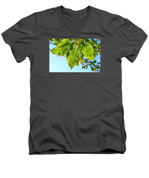 Solar Panels Men's V-Neck T-Shirt