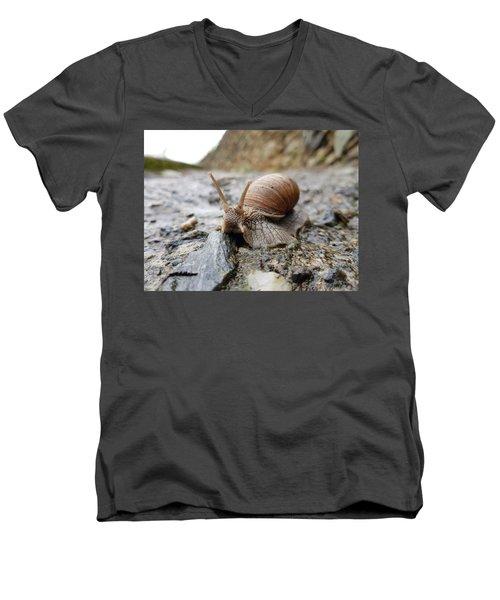 Solitary Snail Men's V-Neck T-Shirt