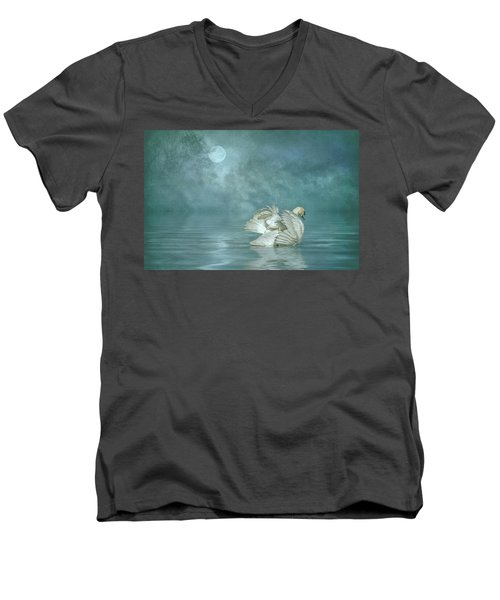 Solitude Men's V-Neck T-Shirt by Brian Tarr