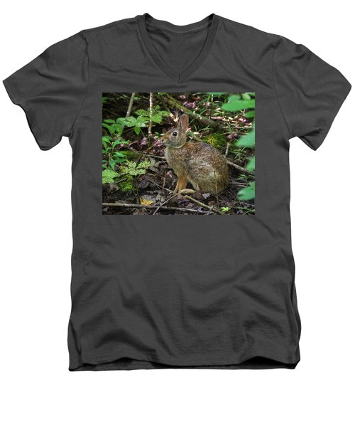 Men's V-Neck T-Shirt featuring the photograph Some Bunny Stopped By by Bill Pevlor