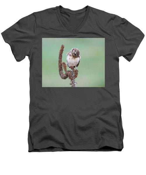 Some Days I Can't Tell Which Way Is Up Men's V-Neck T-Shirt
