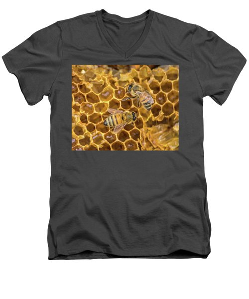 Men's V-Neck T-Shirt featuring the photograph Some Of Your Beeswax by Bill Pevlor
