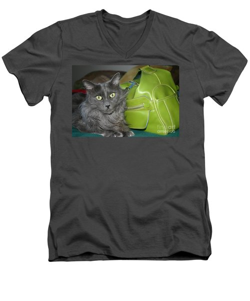 Someone Say Green? Men's V-Neck T-Shirt by Marie Neder