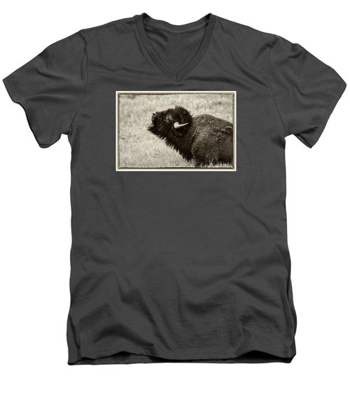 Something In The Air Men's V-Neck T-Shirt by Elizabeth Eldridge