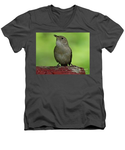 Song Bird Men's V-Neck T-Shirt