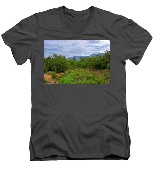 Men's V-Neck T-Shirt featuring the photograph Sonoran Greenery H30 by Mark Myhaver