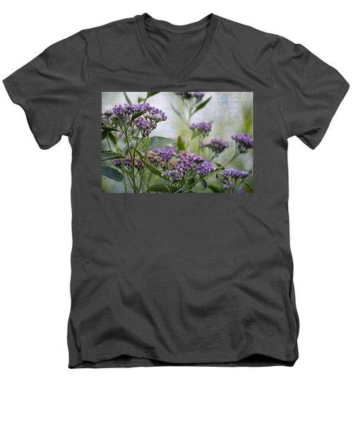 Sophies Garden Men's V-Neck T-Shirt